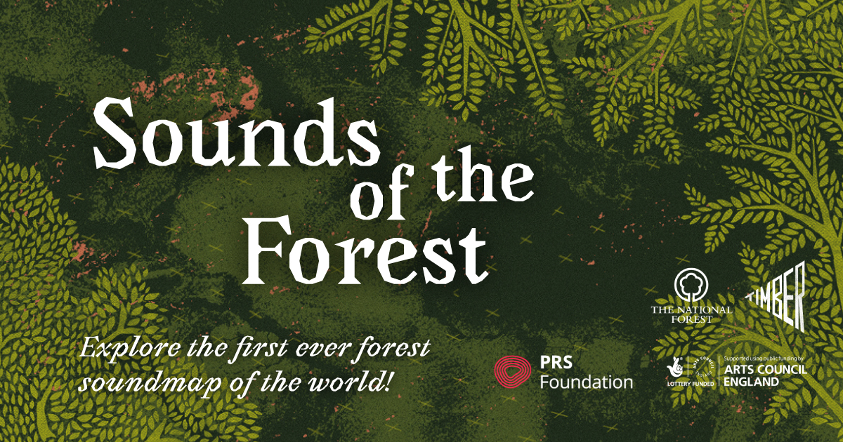 Sounds of the Forest - Soundmap :: Timber Festival