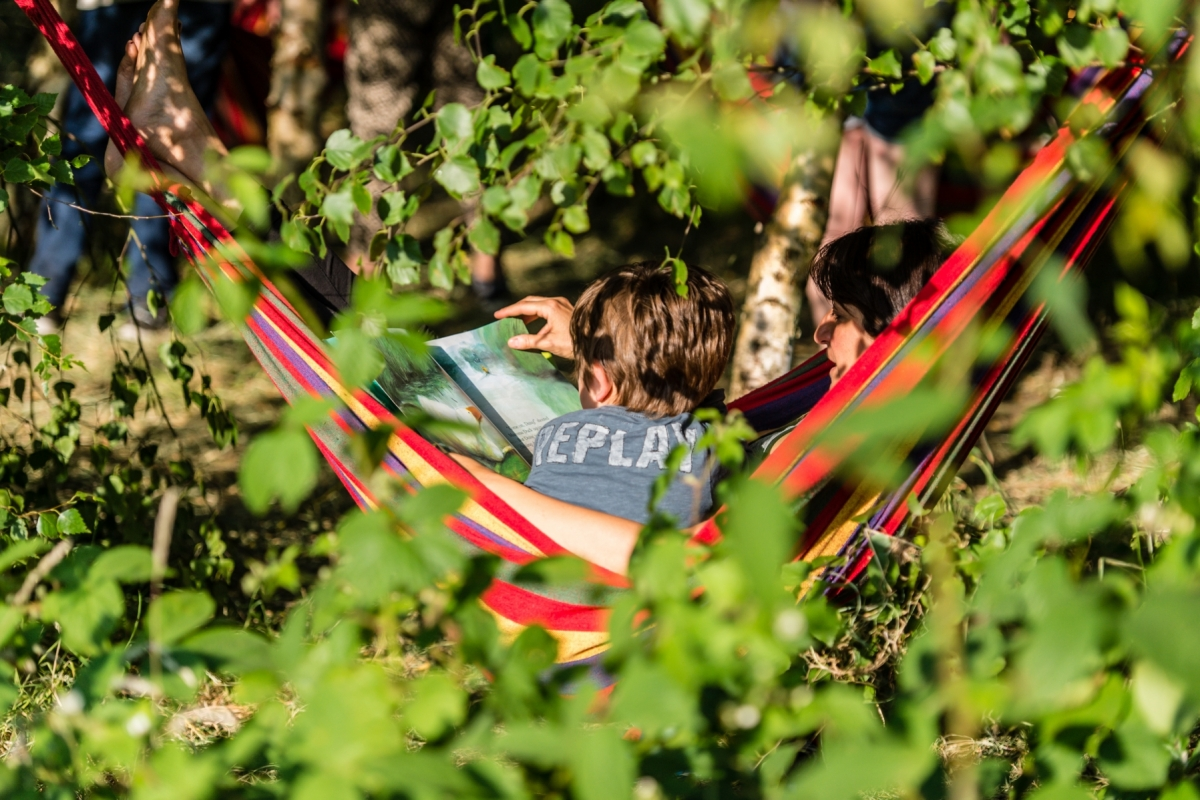Hammocks in trees at Timber Festival credit Andrew_Allcock